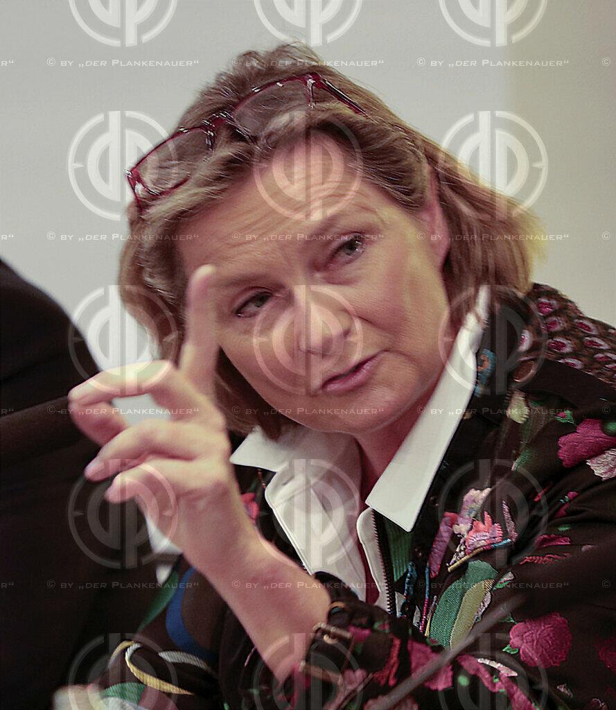 EU-Wahl-steirische Kandidatin VOLLATH (SPÖ)